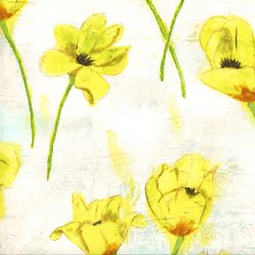 blooming tulips by laura gunn